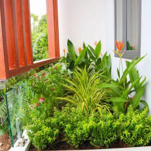 cây xanh ban công phòng ngủ lầu 1